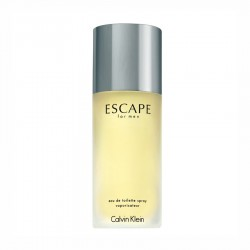 Calvin Klein Escape 100ml for men perfume EDT